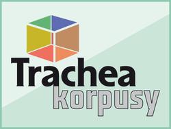 TRACHEA KORPUSY: ROK NA TRHU